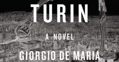 The Years of Lead: A Review of Giorgio De Maria's The Twenty Days of Turin