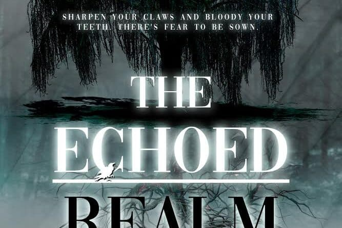 """REVIEW: """"The Echoed Realm"""" by A.J. Vrana"""
